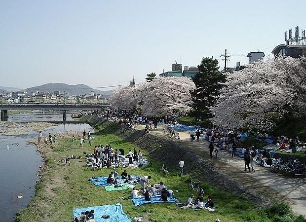 Viajes Viramundo Kioto - Silhouette de Celebrity Cruise