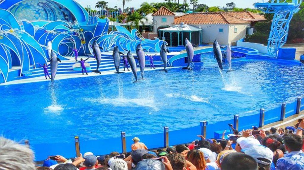 Viajes Viramundo Orlando 10 min 1024x573 - Orlando: los mejores parques temáticos